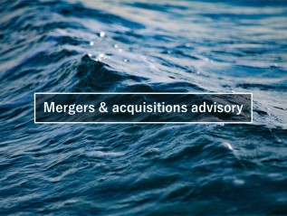Merger & acquisition advisory